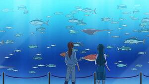 GPPC36 - Minami and Asuka in aquarium