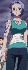Wounded Nojiko Episode of Nami