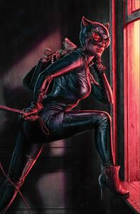 Catwoman Vol 5 25 Textless Variant