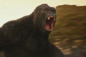 Kong Skull Island Final Official Trailer 6.0