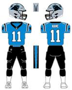 Panthers alternate uniform