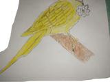 Flutterbye
