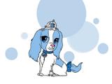 Cindy (Puppy)