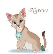 Natcha.png