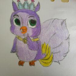Night (Owl)