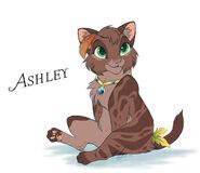 Ashley Kitten