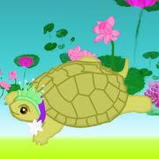 Hope Turtle.jpg