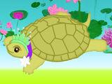 Hope (Turtle)