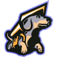 Team Projectlogo square.png