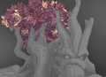 Grover Head Lavender Foliage Icon.png