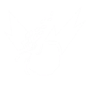 GUI Store Icon.png