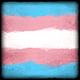 Avatar Transgender Pride Icon.png