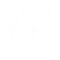Store Mount Skin Icon.png