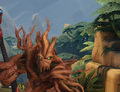 Grover Head Winter Foliage.png