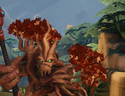 Grover Head Autumn Foliage.png