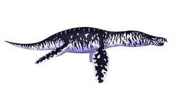 Kronosaurus Swim Tests 2