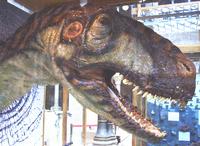 Life restoration of the megalosaurid Eustreptospondylus.