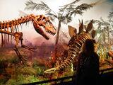 List of dinosaurs
