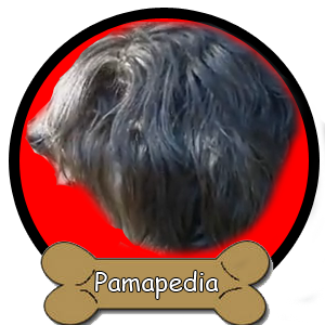 Pamapedia.png