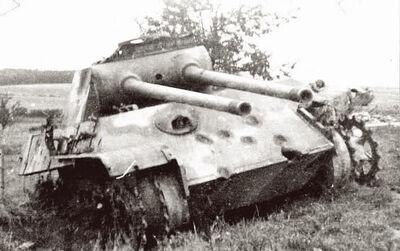 -fake-Double Gunned Panther.jpg