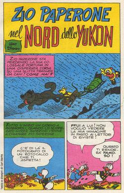 Nord dello Yukon.jpg