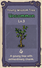 3 - Young Wisdom Tree.png