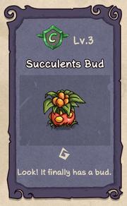 Succulents 3.png