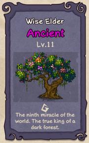 11 - Wise Elder.png