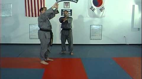 Advanced Break Falls for Martial Arts