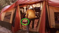 DJ Roomba in tent 1000x.jpg