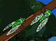 Blinky bills ghost cave - cicada