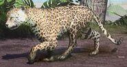 Goldman's Jaguar ZTX