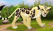 Leopard TLG