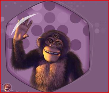 Paul The Monkey