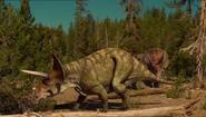 Triceratops horridus (V2)