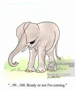 Animals-elephant-ears-dumbo-hide and seek-playing-twa0126 low