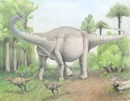 Antarctic Titanosaur