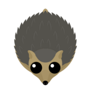 Mopeio Hedgehog