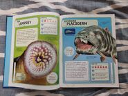 Sharks and Other Deadly Ocean Creatures (1)