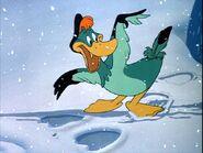 Sonia Duck