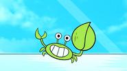 TTG Fiddler Crab