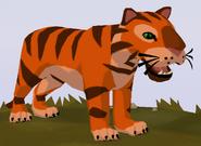 Bengal Tiger WOZ