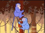 Monkey, Proboscis (The Cyberchase Movie)