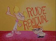Rude Removal