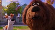 Secret-life-pets-disneyscreencaps.com-7762