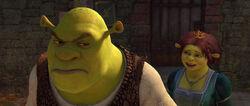 Shrek4-disneyscreencaps.com-1444.jpg