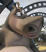 Gloria in Madagascar Escape 2 Africa
