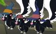 Skunk bp 2