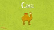 Bonny Wondy Camel