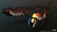 CeratosaurusComposite